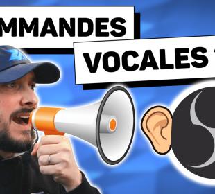 Contrôler Son Stream Avec la Voix Tutoriel Voice Attack